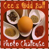 Cee's Odd Ball Photo Challenge